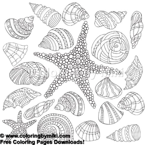 Zentangle Sea Shells Coloring Page 719 Coloring By Miki