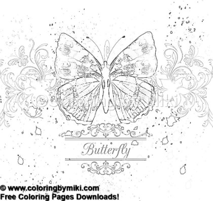 Elegant Butterfly Coloring Page 1134 Coloring By Miki