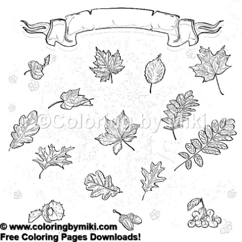Autumn Leaves And Acorns Coloring Page 1225 Coloring By Miki